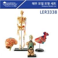 해부모델 모형세트 LER3338 [러닝리소스]