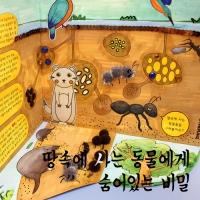 [NEW] 땅속에 사는 동물들에게 숨어있는 비밀 _5인용