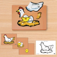 C0230 닭 성장 퍼즐 (3단 겹침)