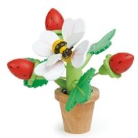 [텐더리프]꼬마가드너 딸기꽃화분